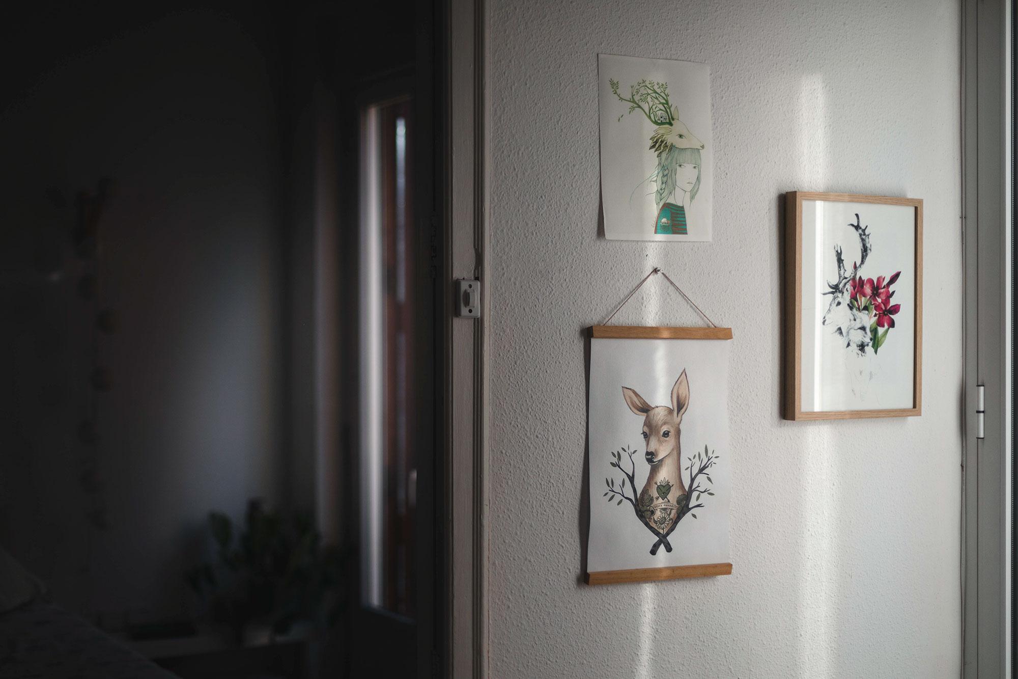 Ilustraciones de ciervos